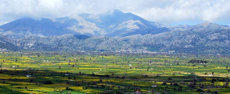 lassithi-plateau