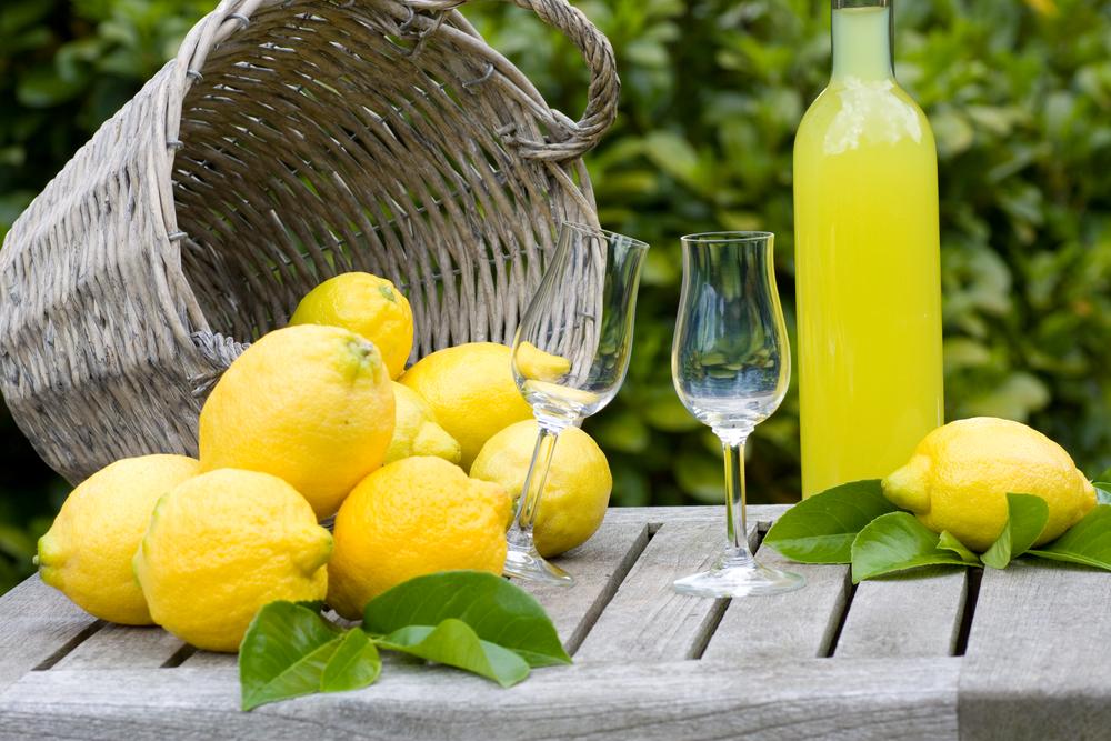 lemon-tour-sorrento